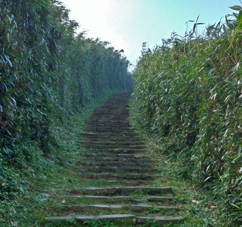 台北 七星山 小油坑へ至る階段