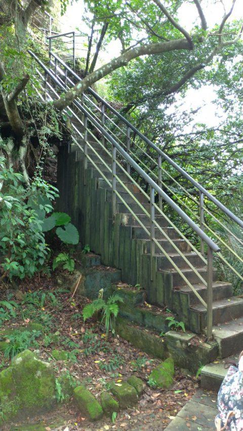 虎山 普通の階段